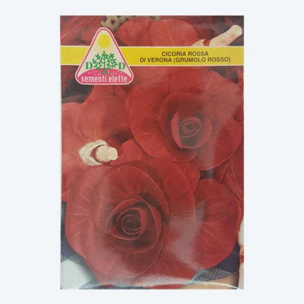 cicoria rossa di verona
